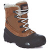 The North Face Youth Shellista Extreme Shoes Dchndbn/Mnltivy